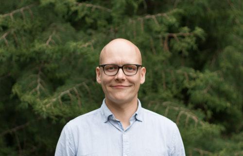Karl Viilmann: Analüütik